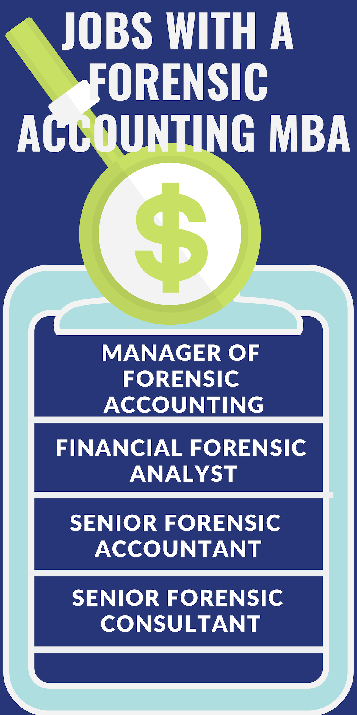 What Can I Do With A Forensic Accounting Mba Mba Central